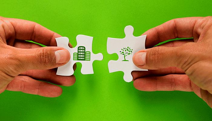 O que faz uma empresa de consultoria ambiental?